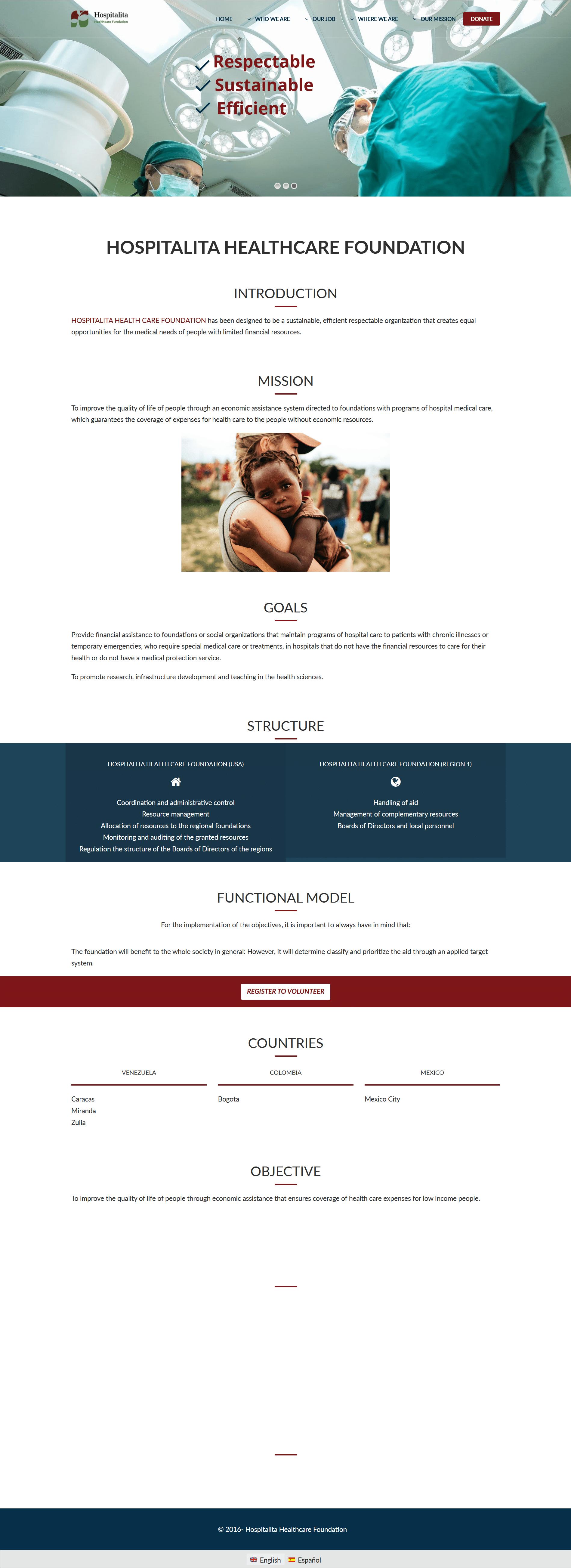 Volunteer Form English